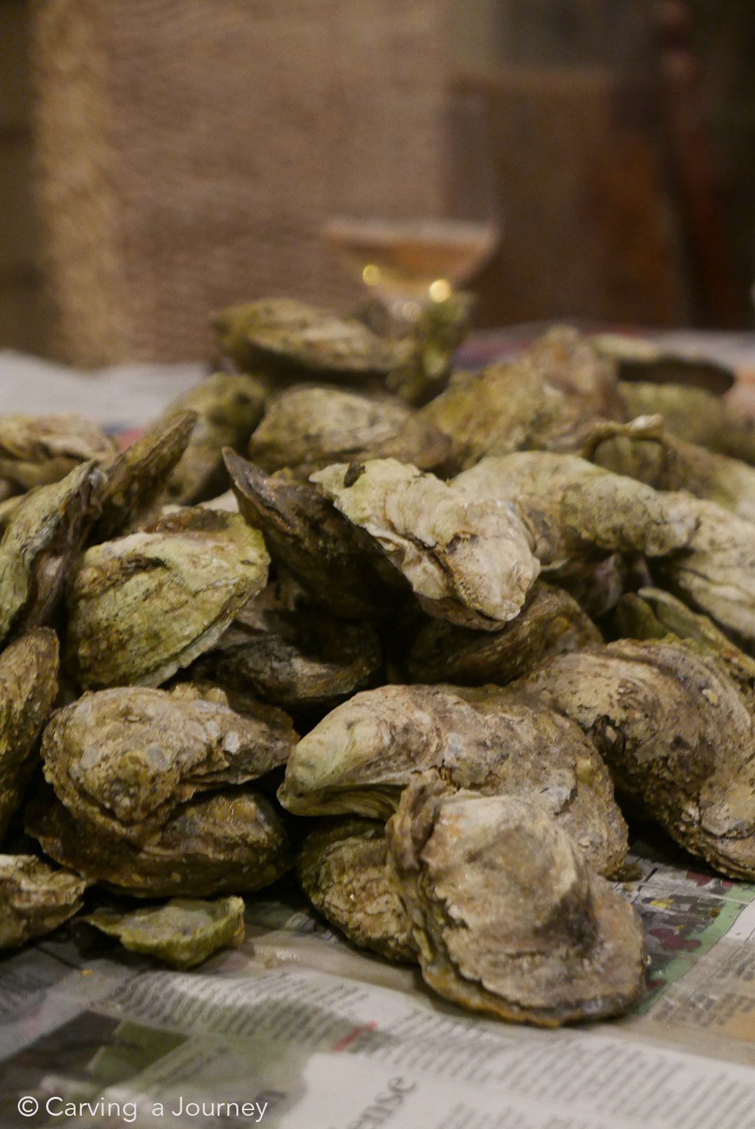 Chesapeake Bay Oysters